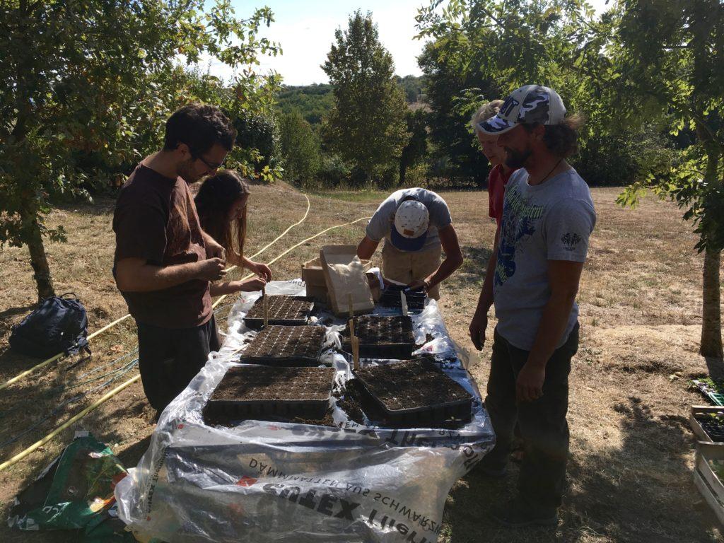Un Petit Potager Productif jardinage permacole - module 2 : semer, planter, entretenir et récolter |  cultures des demains